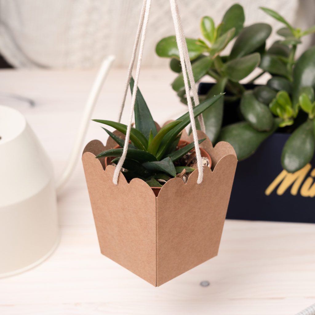Make a hanging pot with cardboard